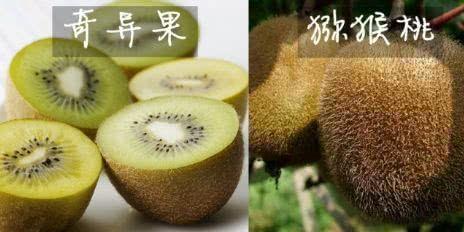 """4对水果界的""""双胞胎"""",让人傻傻分不清楚,不熟悉会被以假乱真"""