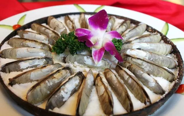 一个合格吃货的必备素养:一招辨别烧烤摊上的各种贝类